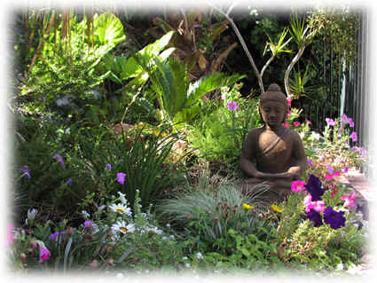 Experience The Tranquillity Of A Live Art Garden Design Meditation Garden.  Using Gently Compatible Plants To Create A Serene Atmosphere With
