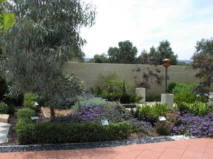 Live art garden and landscape design natural oz for Australian garden designs pictures
