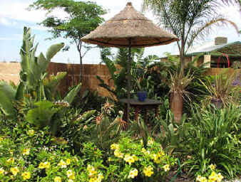 Live Art Garden And Landscape Design African Style